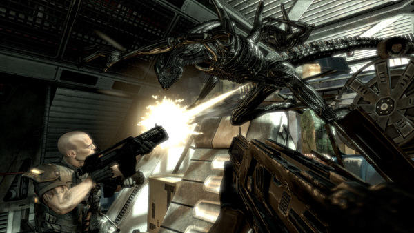 Купить ключ Aliens vs Predator для STEAM.